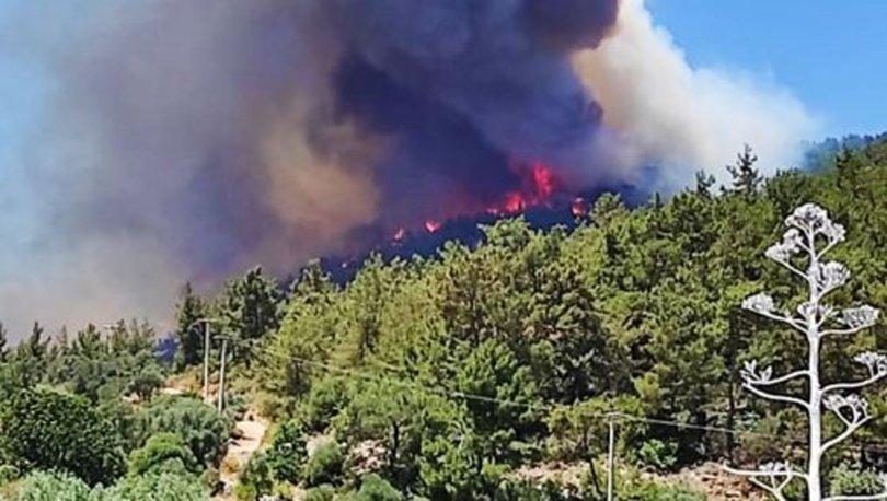 Muğla'daki orman yangını büyüyor - Haberler