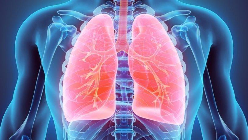 Sigarayı bırakmaya yardımcı 12 etkili öneri!