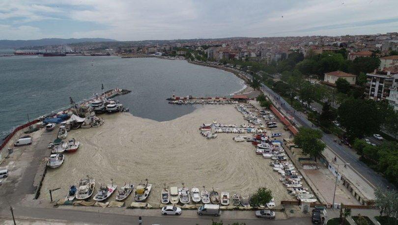 Son dakika: Müsilaj (deniz salyası) tehlikesine karşı Marmara Denizi'ni Koruma Eylem Planı açıklanacak