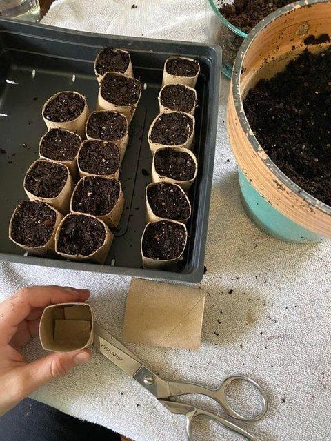 Bahçecilikle ilgili pratik bilgiler! - Haberler