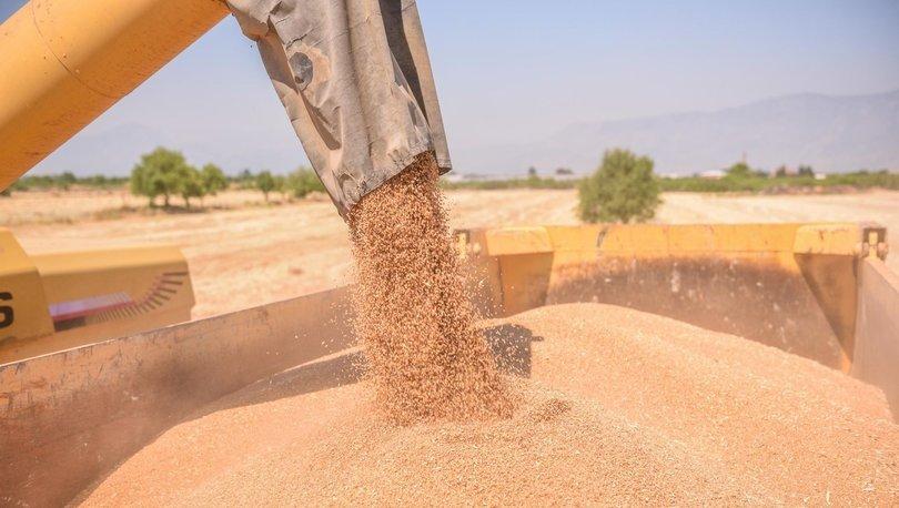 Ekmeklik buğday kullanımı sınırlandırıldı