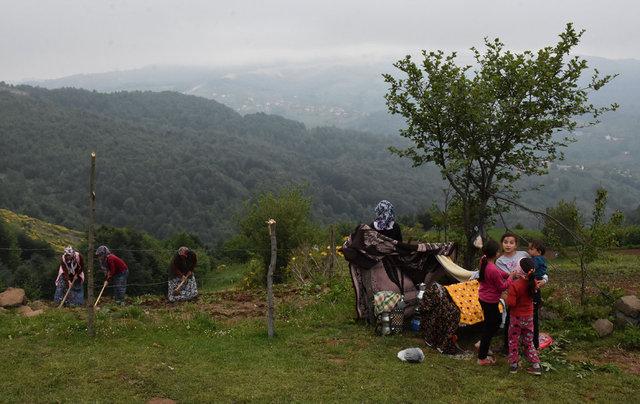 Orman gülleriyle cezbeden Korgan Yaylası misafirlerini ağırlamaya başladı