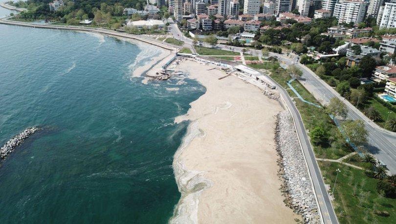 Marmara'da deniz salyası! SON DAKİKA: Müsilaja karşı ne yapmalı? - VİDEO