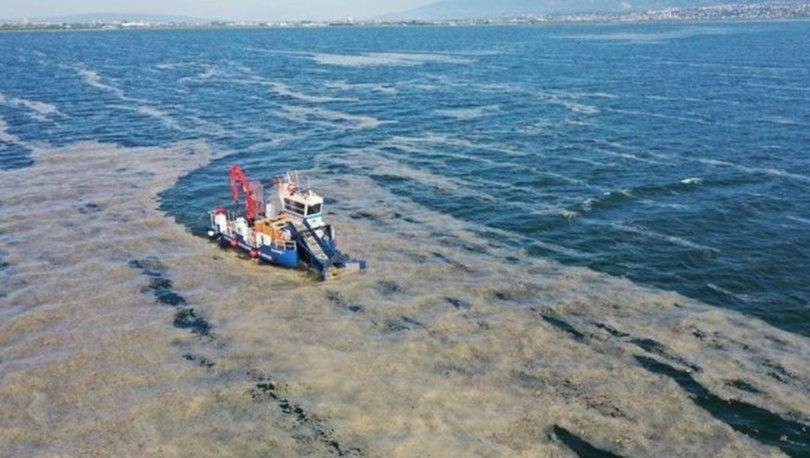 Deniz salyası nedir, nasıl oluşur? Deniz salyası (müsilaj) neden olur, ne zaman kaybolur?