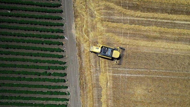 Tarım sektöründen tarihinin en yüksek ocak-mayıs ihracatı
