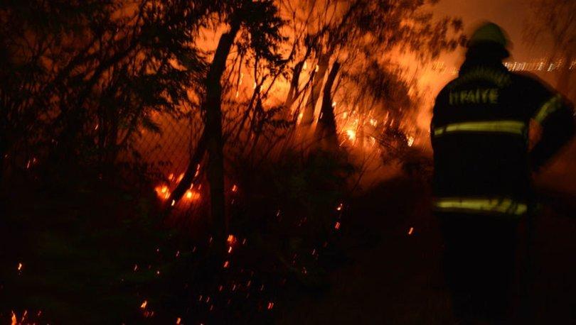 Havai fişekler Boğaziçi Mahallesi'nin Pınarbaşı mevkiindeki zeytinlikte yangın çıkardı