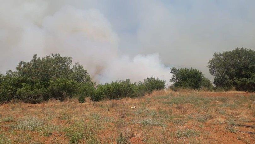 Son dakika... Antalya'da iki noktada yangın çıktı