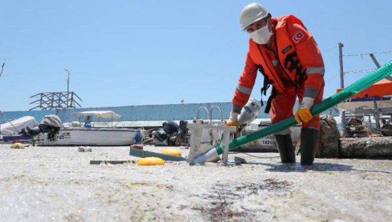 SON DAKİKA: Deniz salyası temizliği başladı! - Haberler