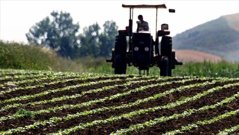 Sertifikalı tohumluk ihracatı 58 bin tondan 72 bin tona yükseldi