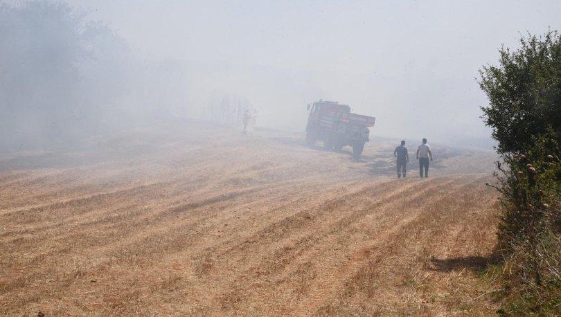 Ormanı küle çeviren sanığa para cezası - Haberler