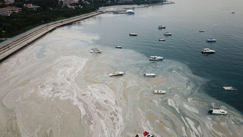 DENİZ SALYASI KABUSU! Son Dakika: Fenerbahçe Sahili'nden çarpıcı müsilaj görüntüsü! - Haberler