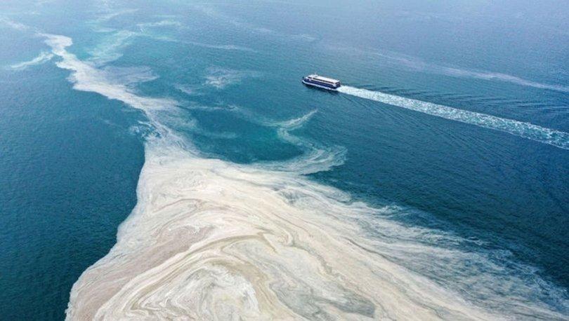 Müsilaj (Deniz salyası) nedir? Müsilaj nasıl oluşur, nasıl temizlenir?