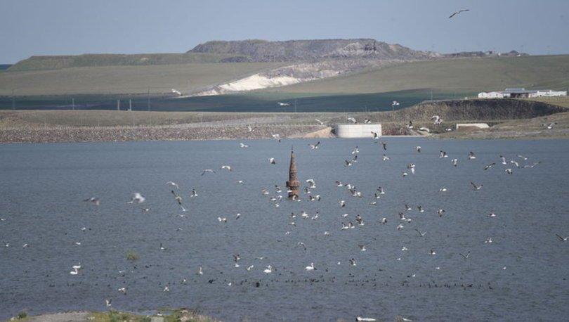 Kars Barajı, su yüzeyinde kalan minare ve kuşlar ile ilgi çekiyor
