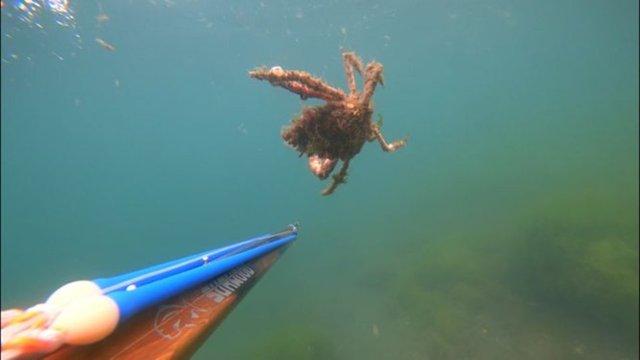 SON DAKİKA: Yalova açıklarında acı fotoğraf! Deniz altındaki tahribat görüntülendi! - Haberler