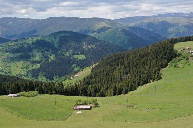 İsviçre Alpleri değil Kümbet!