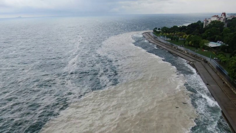 SON DAKİKA: Müsilaj rüzgarla kıyıya sürüklendi - Haberler