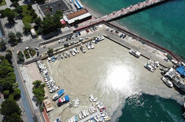 Tekirdağ kıyıları yeniden müsilajla kaplandı