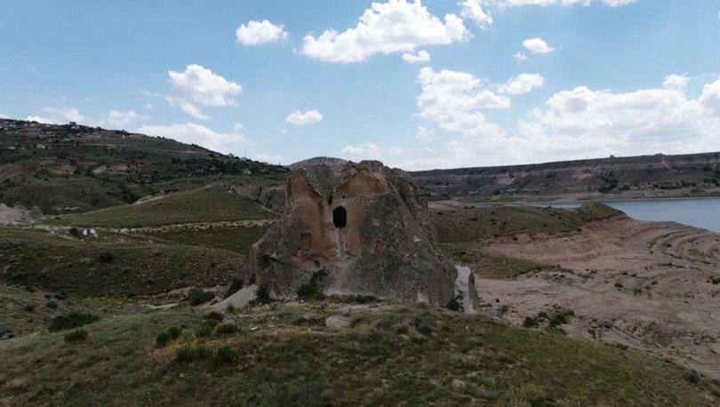 7.5 milyon yıllık fosiller çıkarılmaya başlandı