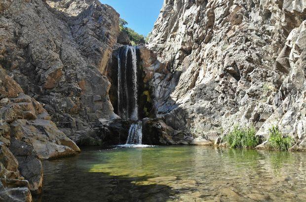 Meşe ağaçlarının arasında doğal havuz