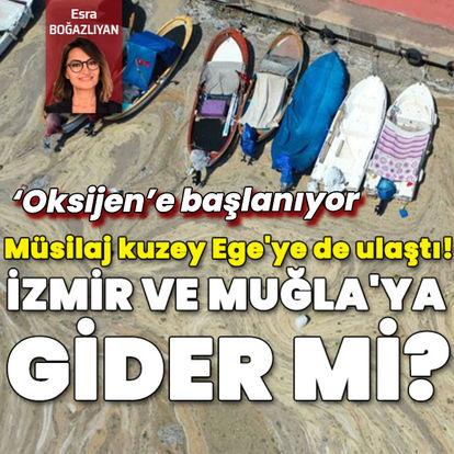 Müsilaj kuzey Ege'ye de ulaştı! İzmir'e ve Muğla'ya gider mi?