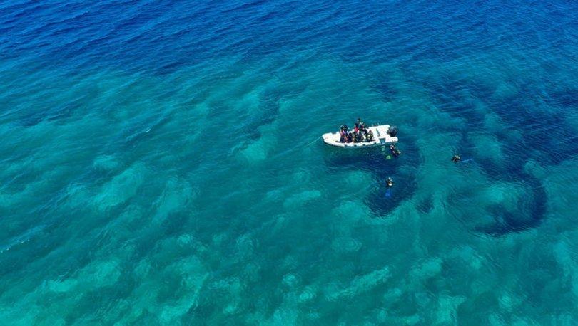 Karaburun'da dalış turizminde hareketlilik başladı