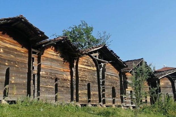 Çam ağacından inşa edildi... 350 yıllık!