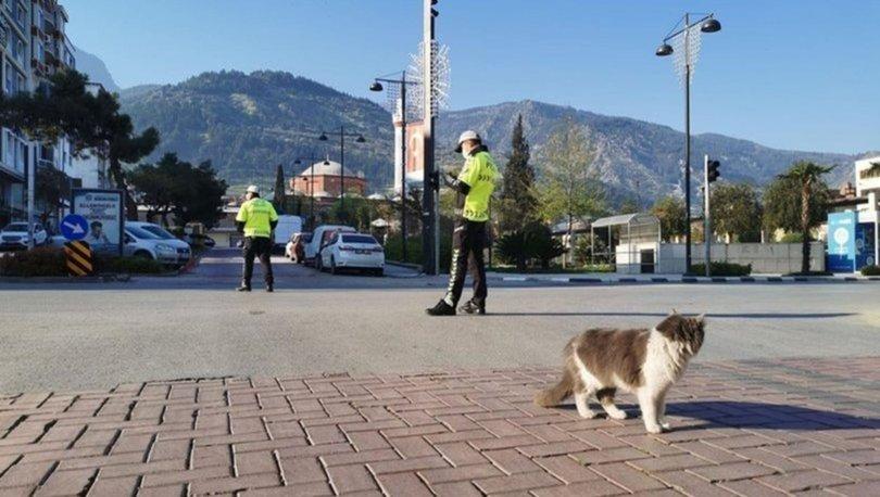 Bugün sokağa çıkma yasağı var mı? Sokağa çıkma yasağı ne zaman, saat kaçta bitiyor? Yasaklar kalktı mı?