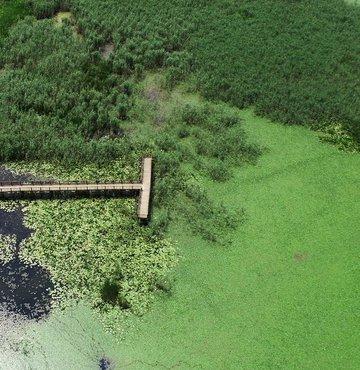Şelaleler ve göller şehri olarak bilinen Düzce, normalleşme sürecinin başlamasıyla doğa tutkunu ziyaretçilerin uğrak yeri oldu