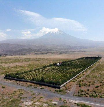 Ağrılı Abdulkadir Ardin, Ağrı Dağı eteklerindeki çorak arazisini, diktiği meyve ağaçlarıyla adeta bir vahaya çevirdi