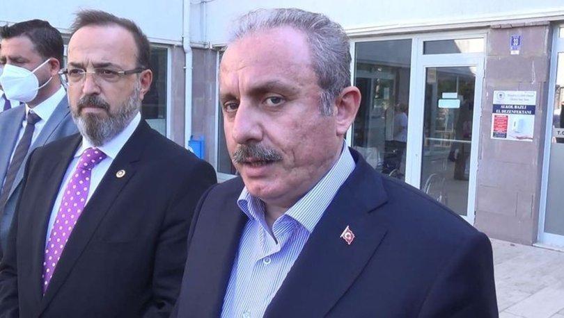 TBMM Başkanı Mustafa Şentop, Hayvanları Koruma Kanununa ilişkin açıklama yaptı