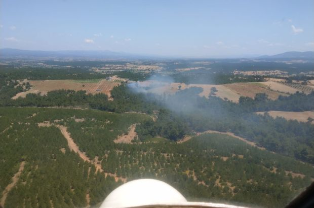 Çanakkale'deki yangın kontrol altında