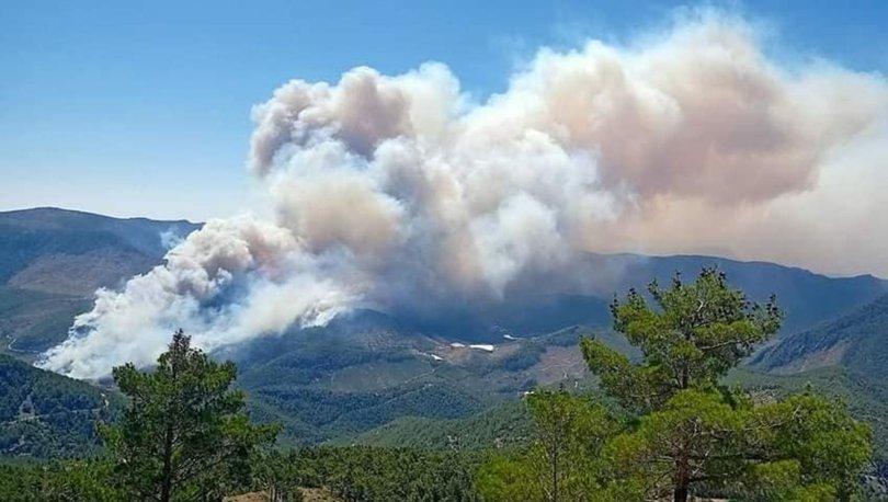 Bir günde 20 orman yangını çıktı! - Haberler