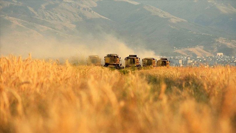 Mayıs ayına ilişkin Tarım-GFE verileri açıklandı
