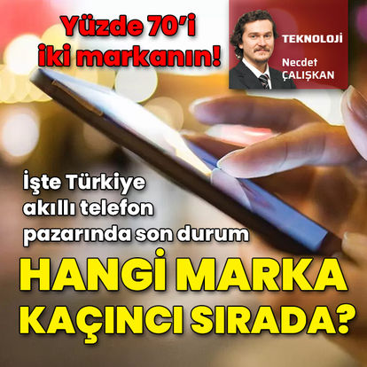 Türkiye'de hangisinin payı ne kadar?