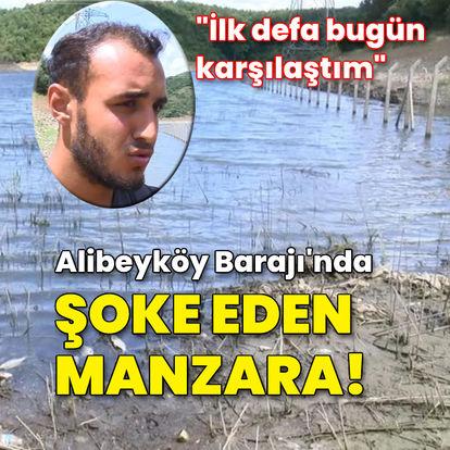 Alibeyköy Barajı'nda korkutan manzara