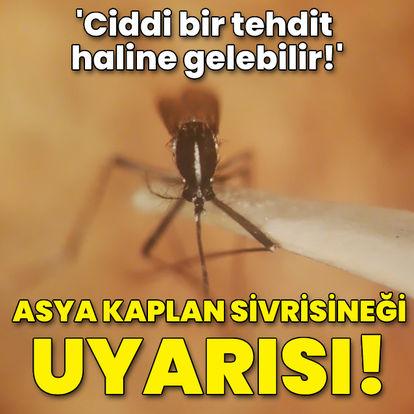 Asya Kaplan Sivrisineği uyarısı!