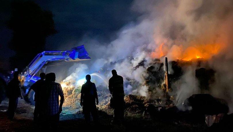 Bandırma'da küçükbaş hayvan çiftliği yandı, 20 kuzu öldü