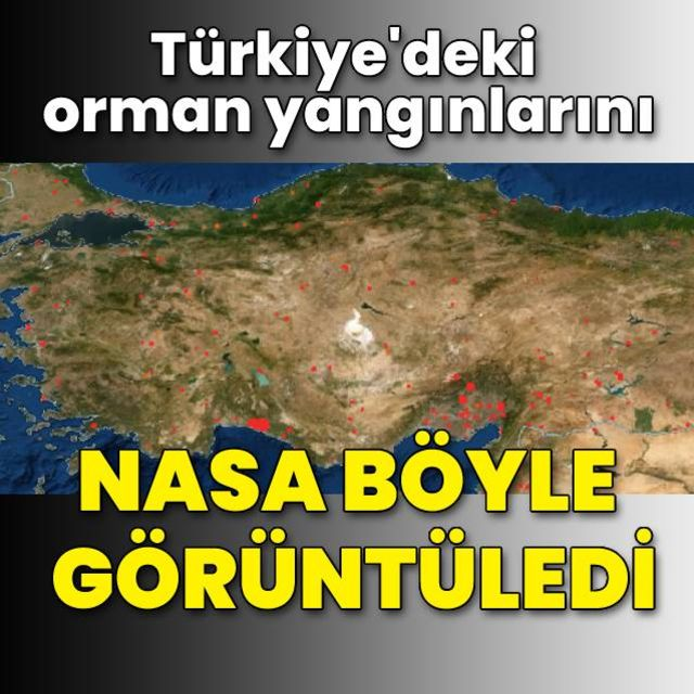 Türkiyedeki orman yangınlarını NASA böyle görüntüledi