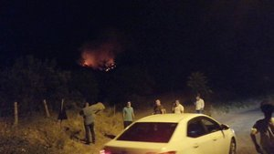Soma'da da orman yangını!