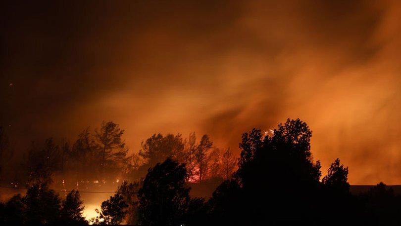 FÖN KABUSU... Son dakika! Uzman isimden orman yangını tespiti: Her yer kurudu