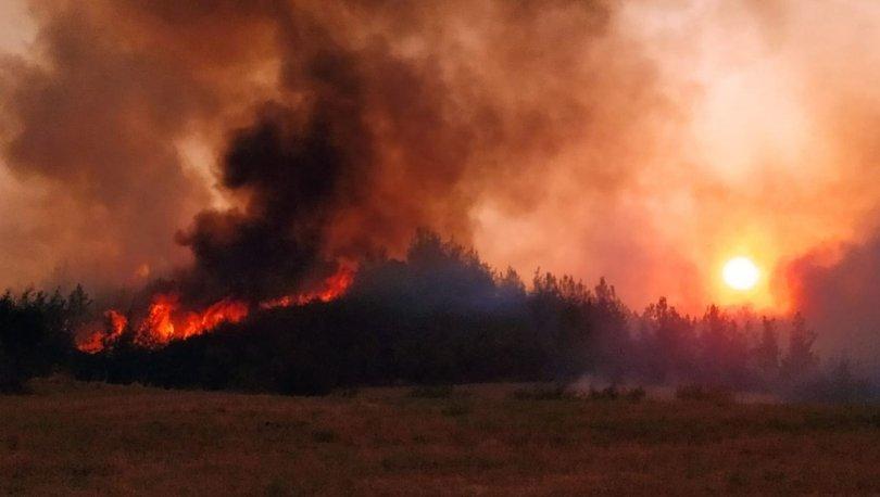 Türkiye'yi saran son dakika yangınları ile ilgili ilk rapor! - Haberler