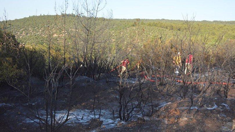 Bilecik'te orman yangını çıktı; 1 şüpheli sabotaj iddiasıyla gözaltında