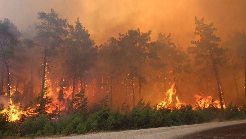 Orman yangını sırasında, öncesinde ve sonrasında ne yapılmalı? - Haberler