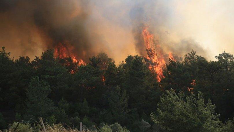 Milas'ta ormanlık alanda çıkan yangın Bodrum'a sıçradı