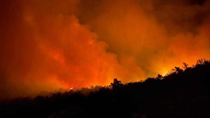 Son dakika! Orman yangınları son durum: Bodrum, Samsun, Gaziantep ve Uşak'ta yangın!