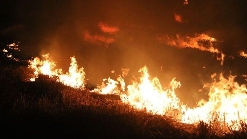 SON DAKİKA HABERİ... Edirne'de anız yangını korkuttu!