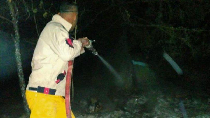 OGM'den Vezirköprü'de yangın iddialarına açıklama
