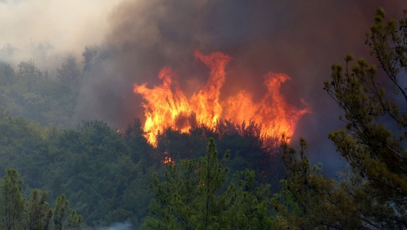 12.5 milyon hektar orman, yangına hassas!