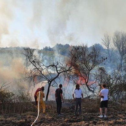 Balıkesir'de elektrik akımına kapılan atmaca makilik alanda yangına neden oldu