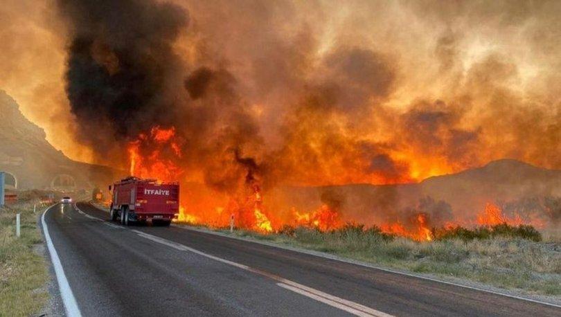 Nallıhan'da yangın! SON DAKİKA: Sebebi belli oldu!